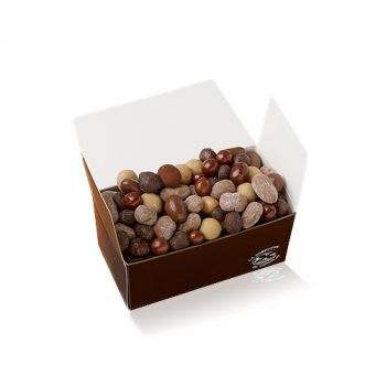 Fruits secs chocolatés boite 320g